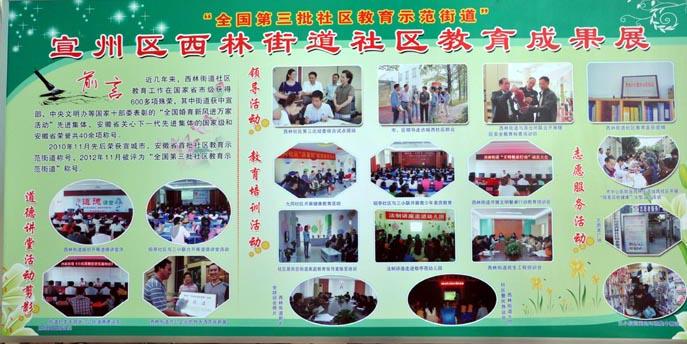 市三小学生参加区全民终身学习活动周书法展演